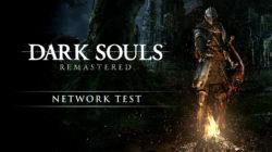 Dark Souls Remastered netowrk test Nintendo Switch