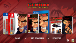 Gekido Kintaro's Revenge Physical Switch