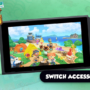 Animal Crossing New Horizons Nintendo Switch Accessory Guide